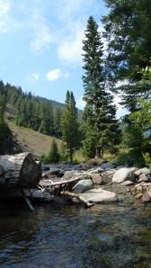 N Fk Wood River